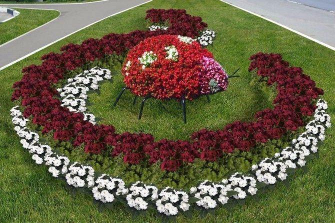 Ландшафтный дизайн розами