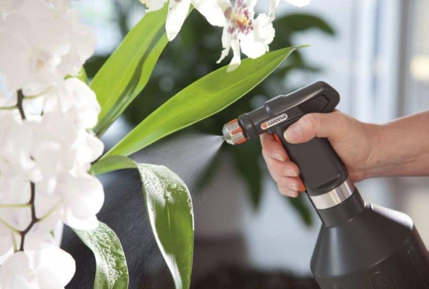 опрыскивание листьев орхидеи